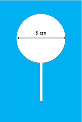 5cm Chocolate lollypop